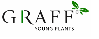 Graff Young Plants